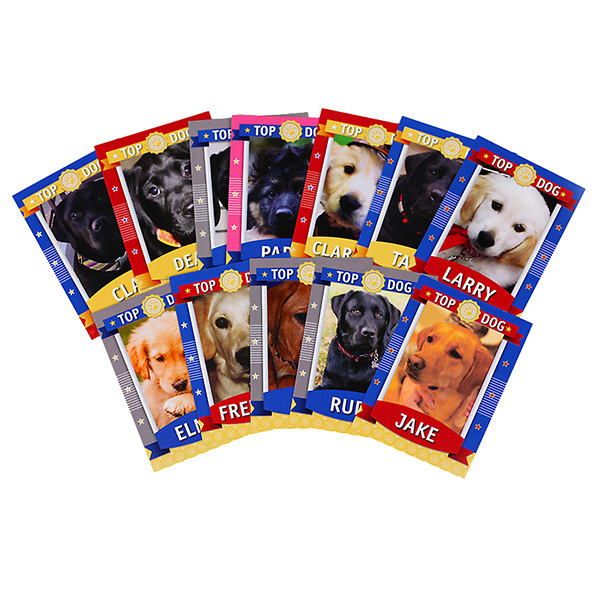 Puppy Jake Trading Cards (Set of 21)